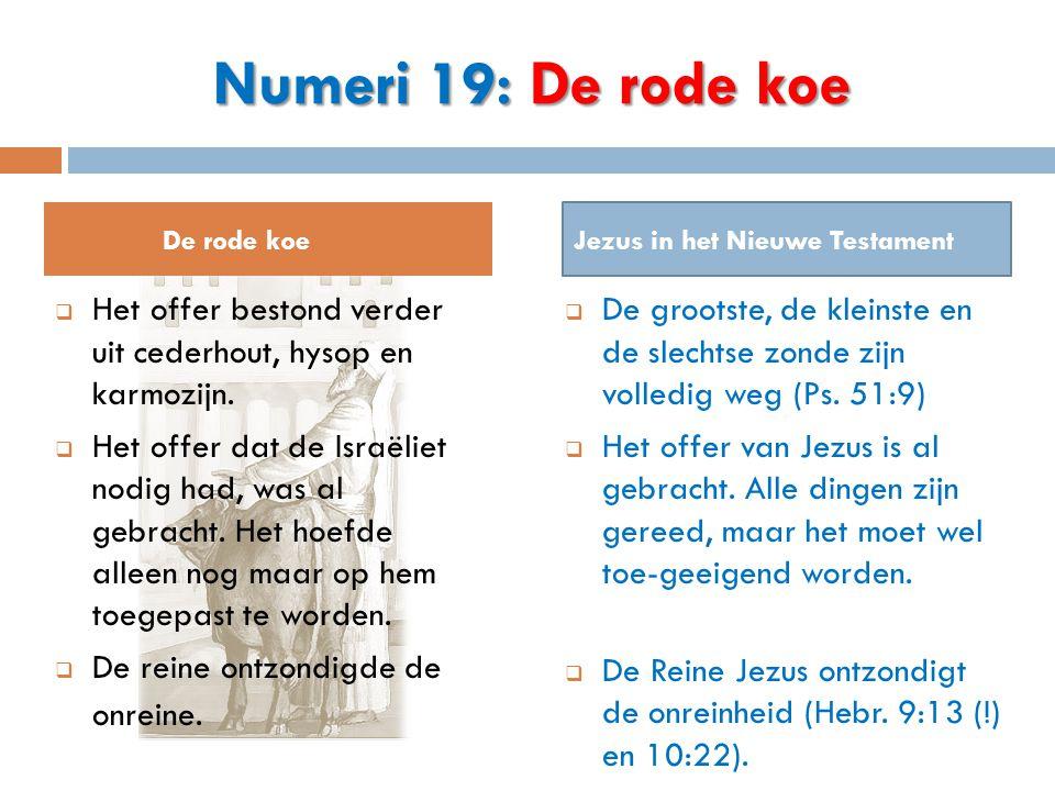 Numeri 19: De rode koe De rode koe. Jezus in het Nieuwe Testament. Het offer bestond verder uit cederhout, hysop en karmozijn.