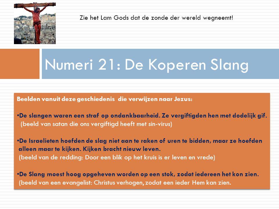 Numeri 21: De Koperen Slang