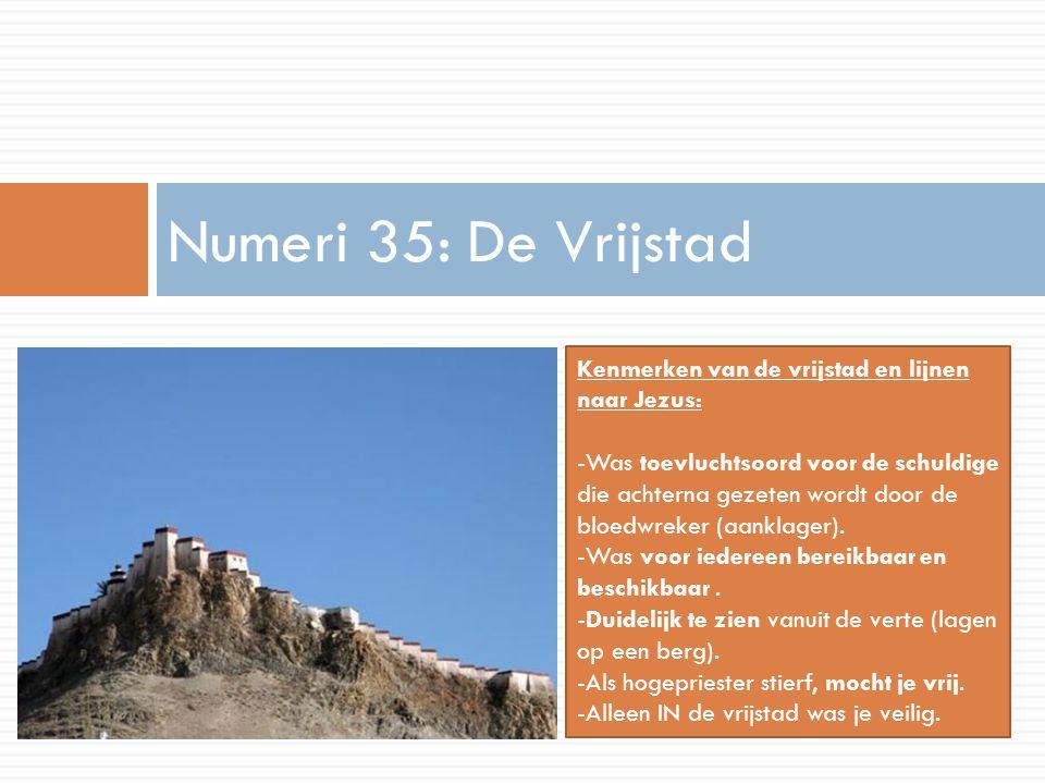 Numeri 35: De Vrijstad Kenmerken van de vrijstad en lijnen naar Jezus: