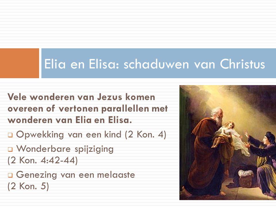 Elia en Elisa: schaduwen van Christus