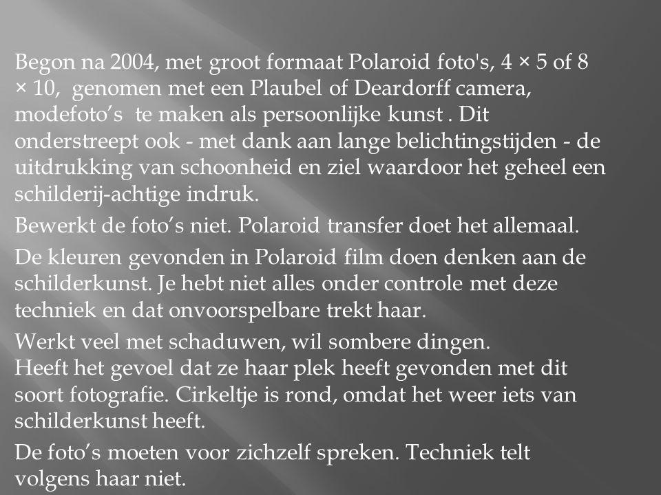 Begon na 2004, met groot formaat Polaroid foto s, 4 × 5 of 8 × 10, genomen met een Plaubel of Deardorff camera, modefoto's te maken als persoonlijke kunst .