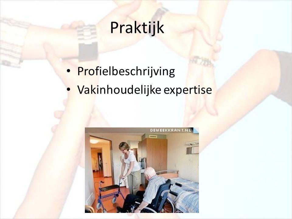 Praktijk Profielbeschrijving Vakinhoudelijke expertise