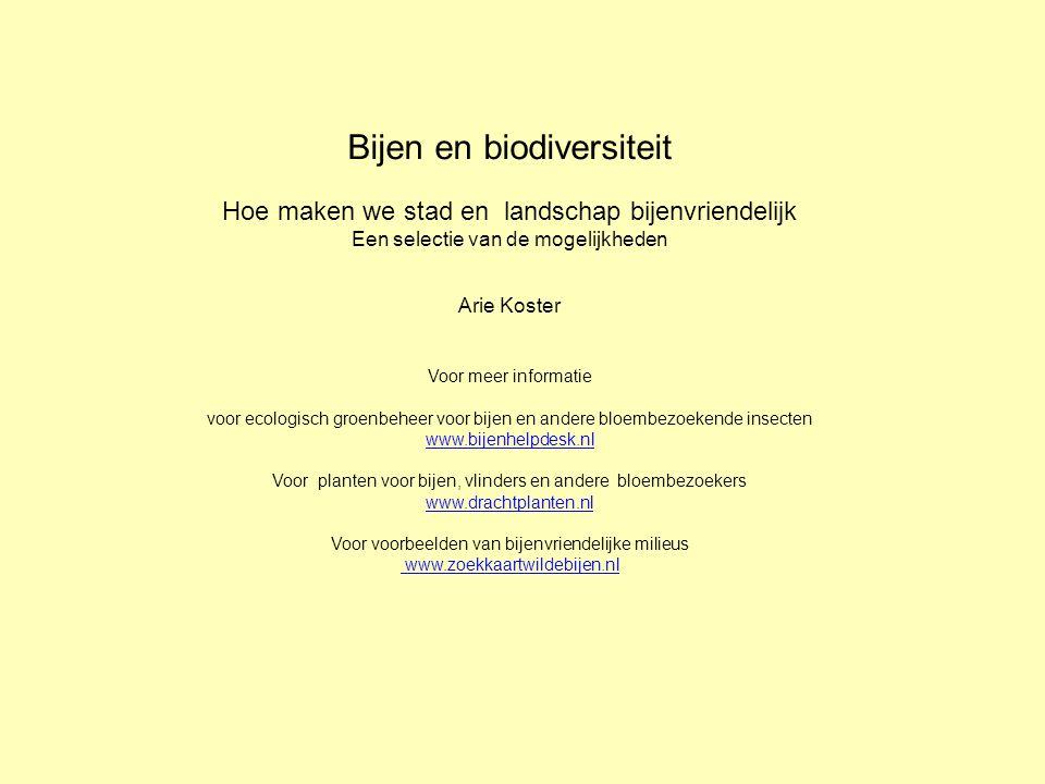 Bijen en biodiversiteit Hoe maken we stad en landschap bijenvriendelijk Een selectie van de mogelijkheden Arie Koster Voor meer informatie voor ecologisch groenbeheer voor bijen en andere bloembezoekende insecten www.bijenhelpdesk.nl Voor planten voor bijen, vlinders en andere bloembezoekers www.drachtplanten.nl Voor voorbeelden van bijenvriendelijke milieus www.zoekkaartwildebijen.nl