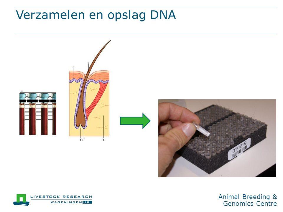 Verzamelen en opslag DNA