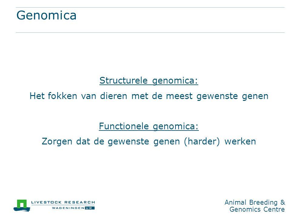 Genomica Structurele genomica: