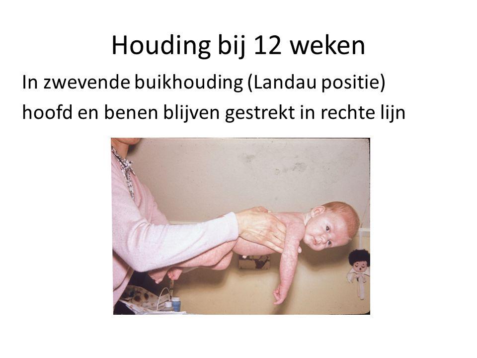 Houding bij 12 weken In zwevende buikhouding (Landau positie)