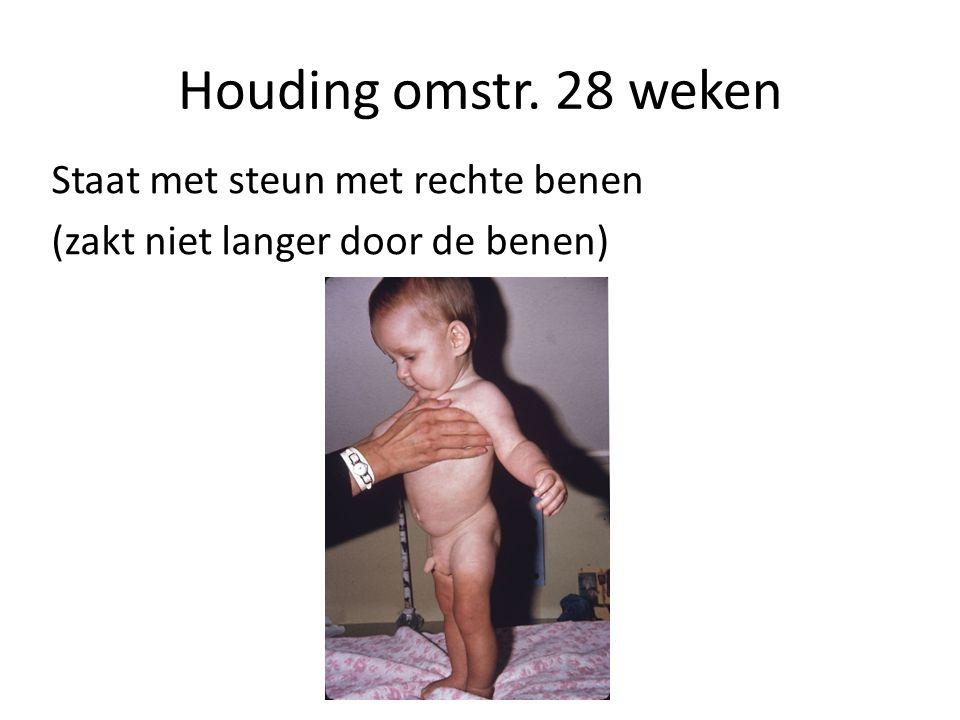 Houding omstr. 28 weken Staat met steun met rechte benen