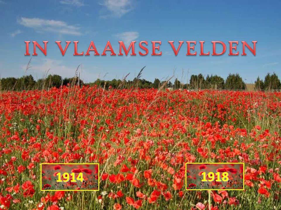 IN VLAAMSE VELDEN 1914 1918