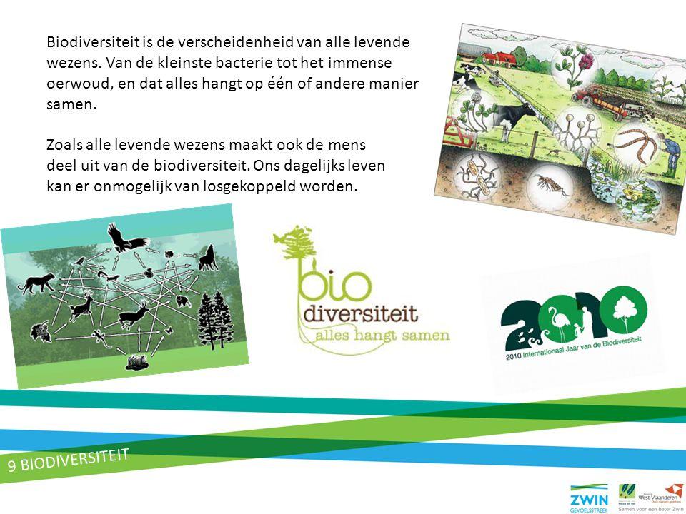 Biodiversiteit is de verscheidenheid van alle levende wezens