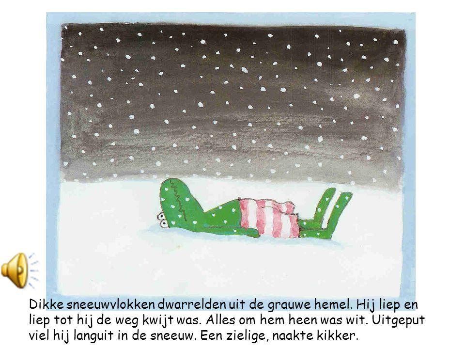 Dikke sneeuwvlokken dwarrelden uit de grauwe hemel