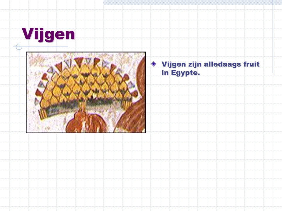 Vijgen Vijgen zijn alledaags fruit in Egypte.