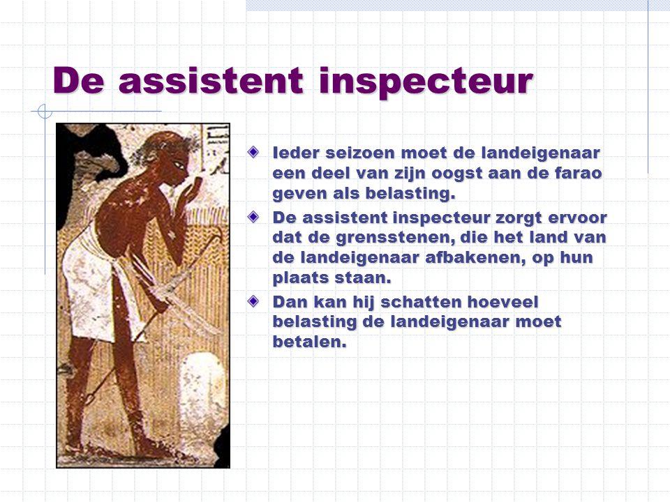 De assistent inspecteur
