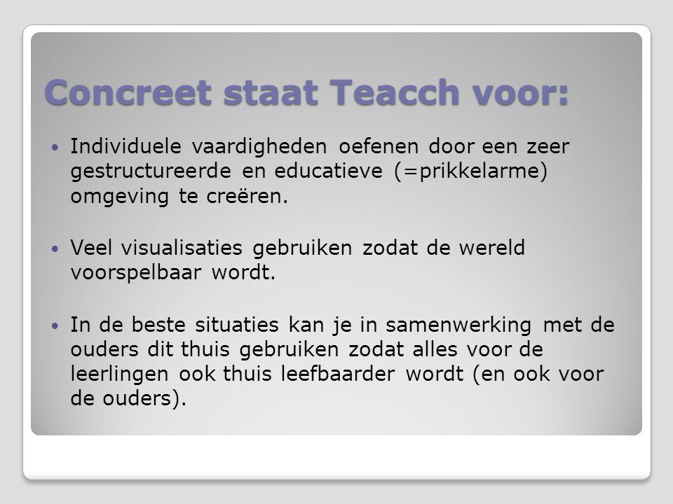 Concreet staat Teacch voor: