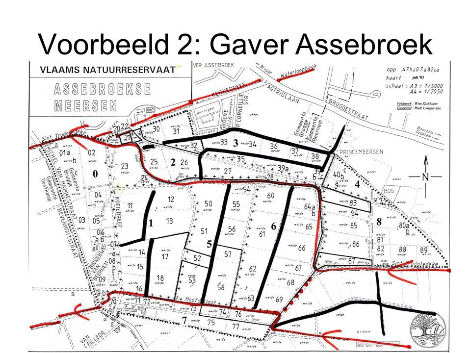 Voorbeeld 2: Gaver Assebroek
