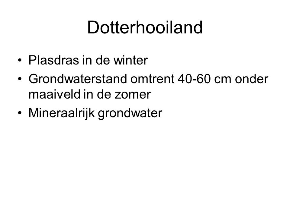 Dotterhooiland Plasdras in de winter