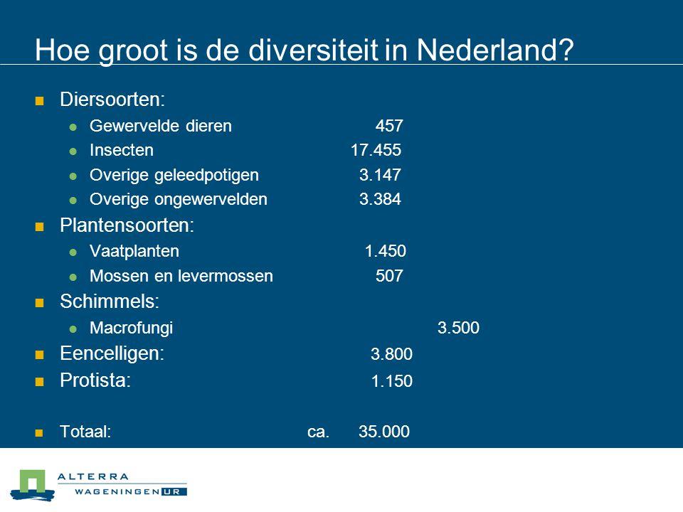 Hoe groot is de diversiteit in Nederland