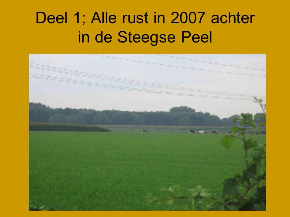 Deel 1; Alle rust in 2007 achter in de Steegse Peel
