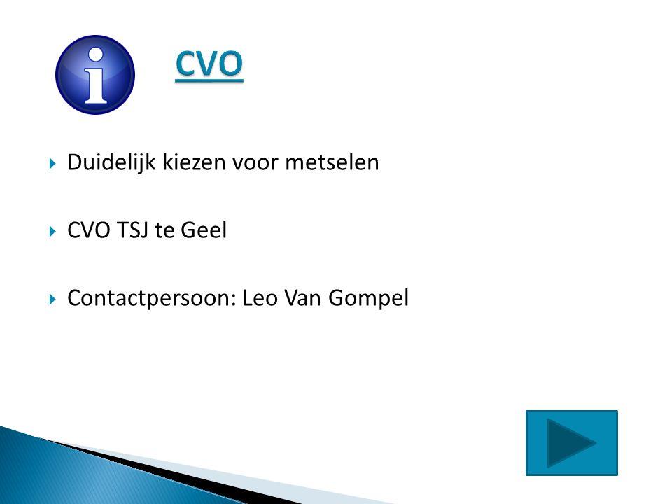 CVO Duidelijk kiezen voor metselen CVO TSJ te Geel
