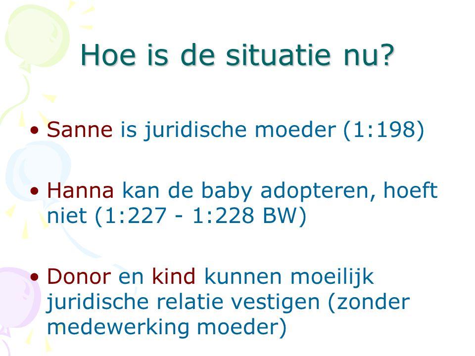Hoe is de situatie nu Sanne is juridische moeder (1:198)