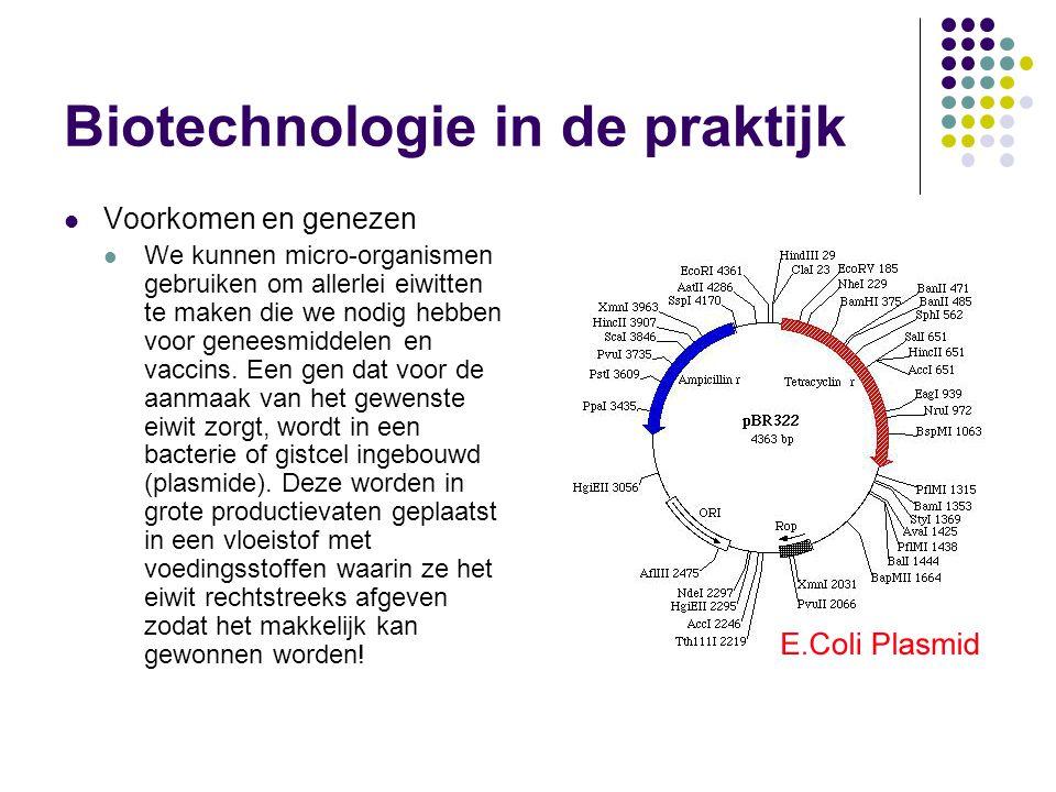 Biotechnologie in de praktijk
