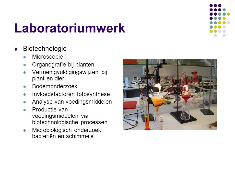 Laboratoriumwerk Biotechnologie Microscopie Organografie bij planten