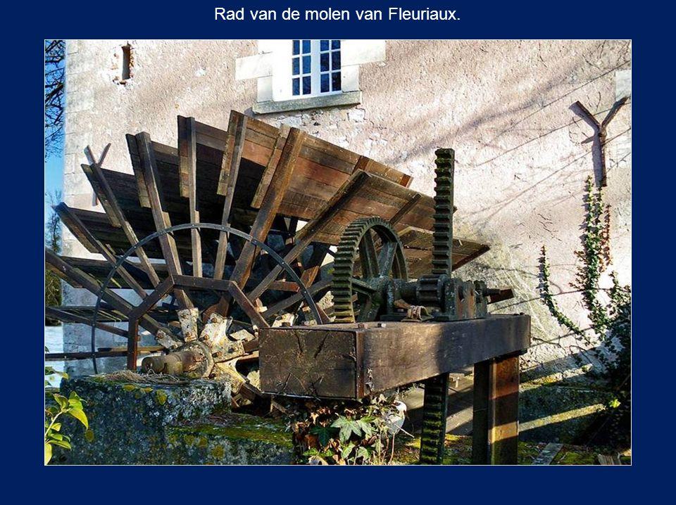 Rad van de molen van Fleuriaux.