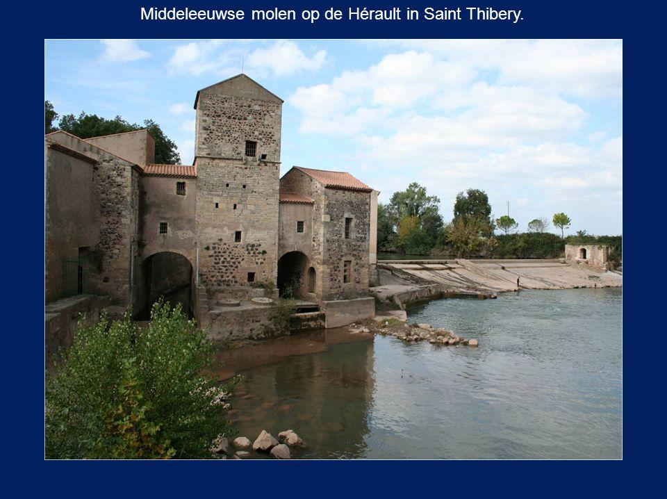 Middeleeuwse molen op de Hérault in Saint Thibery.