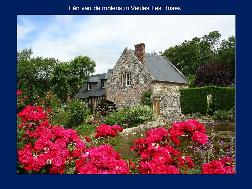 Eén van de molens in Veules Les Roses.