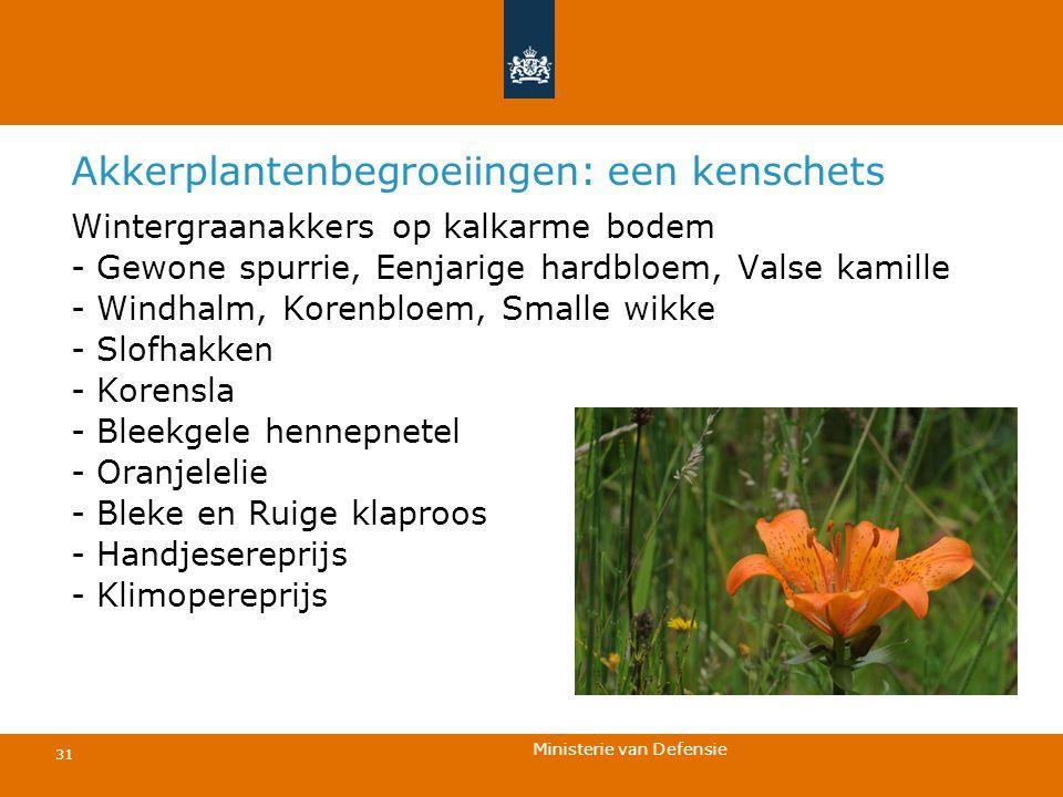 Akkerplantenbegroeiingen: een kenschets