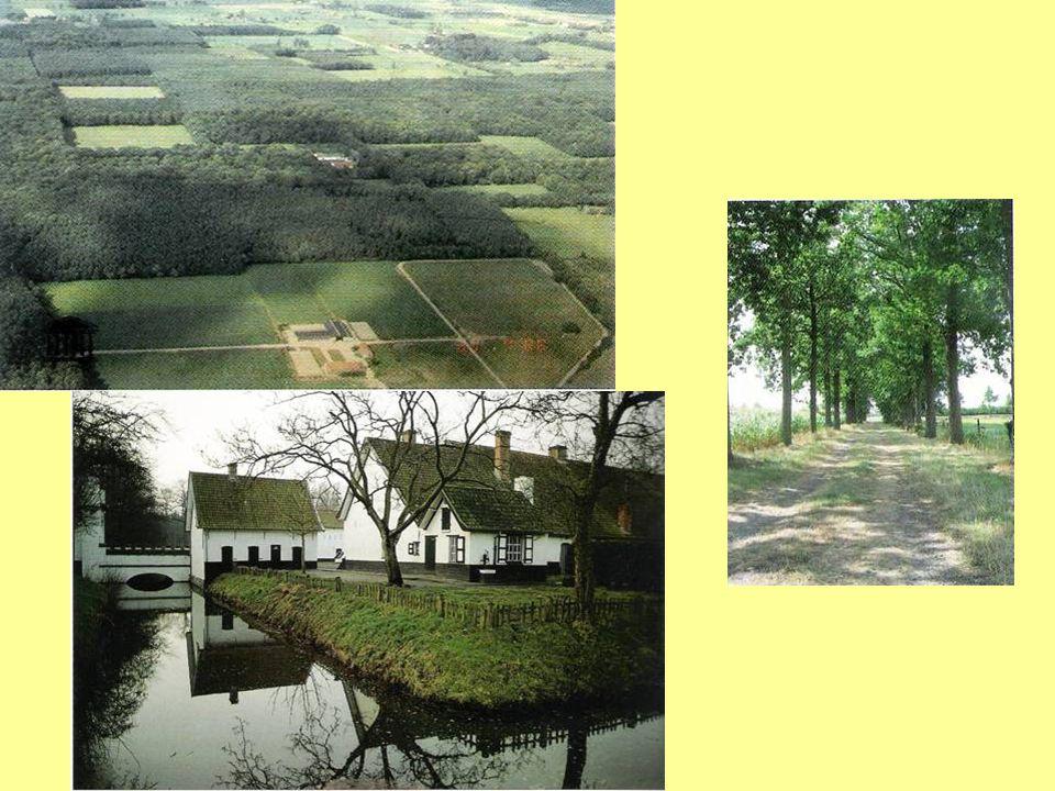 Grote ontginningen in de veldgebieden (3):