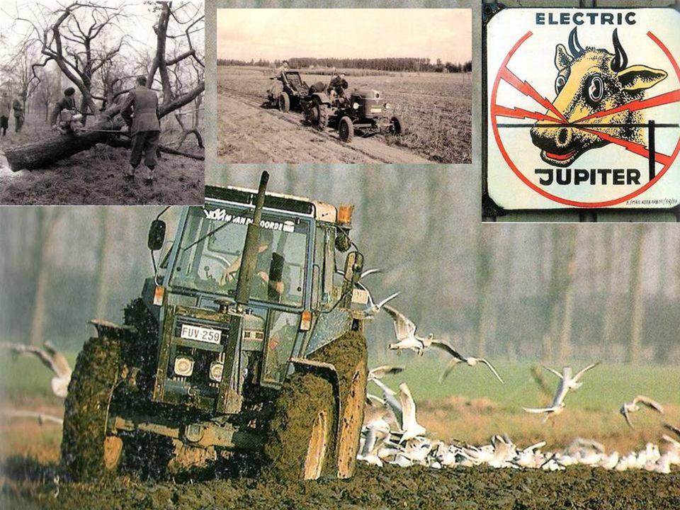 (MB) Na de Tweede Wereldoorlog verloren trekpaarden hun plaats binnen het boerenbedrijf; ze werden vervangen door tractoren. De inzet van tractoren vanaf de jaren 1950-1960 vereenvoudigde het werk op het land in grote mate. Foto van een tractor met een aardappelzakker, jaren 1960 (Grote foto) De tractor is tegenwoordig onmisbaar binnen een landbouwbedrijf.