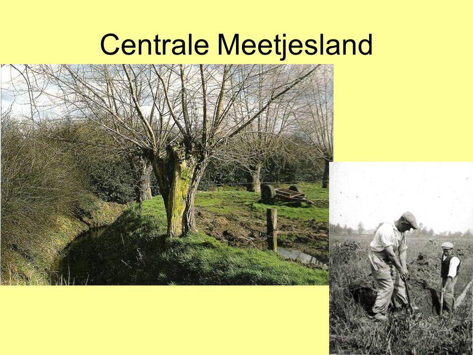 Centrale Meetjesland Grote ontginningen in het Centrale Meetjesland: