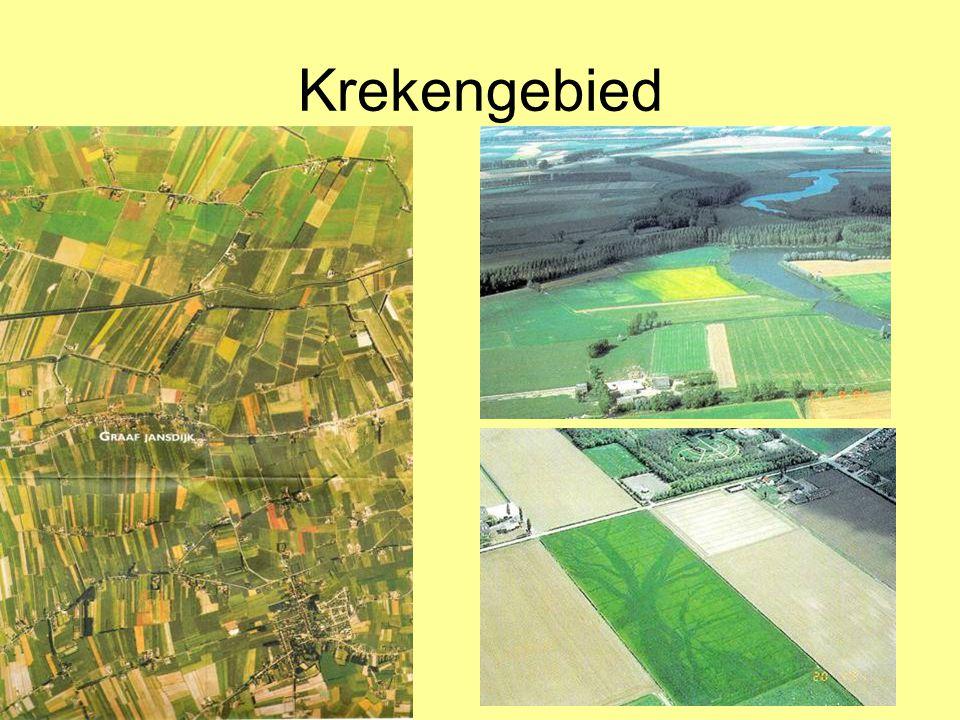 Krekengebied Grote ontginningen in het Krekengebied (1):