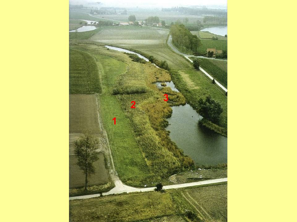 3 2 1 Grote ontginningen in het Krekengebied (2):