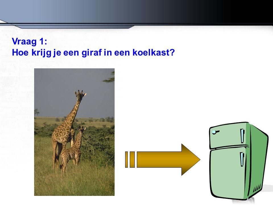 Vraag 1: Hoe krijg je een giraf in een koelkast