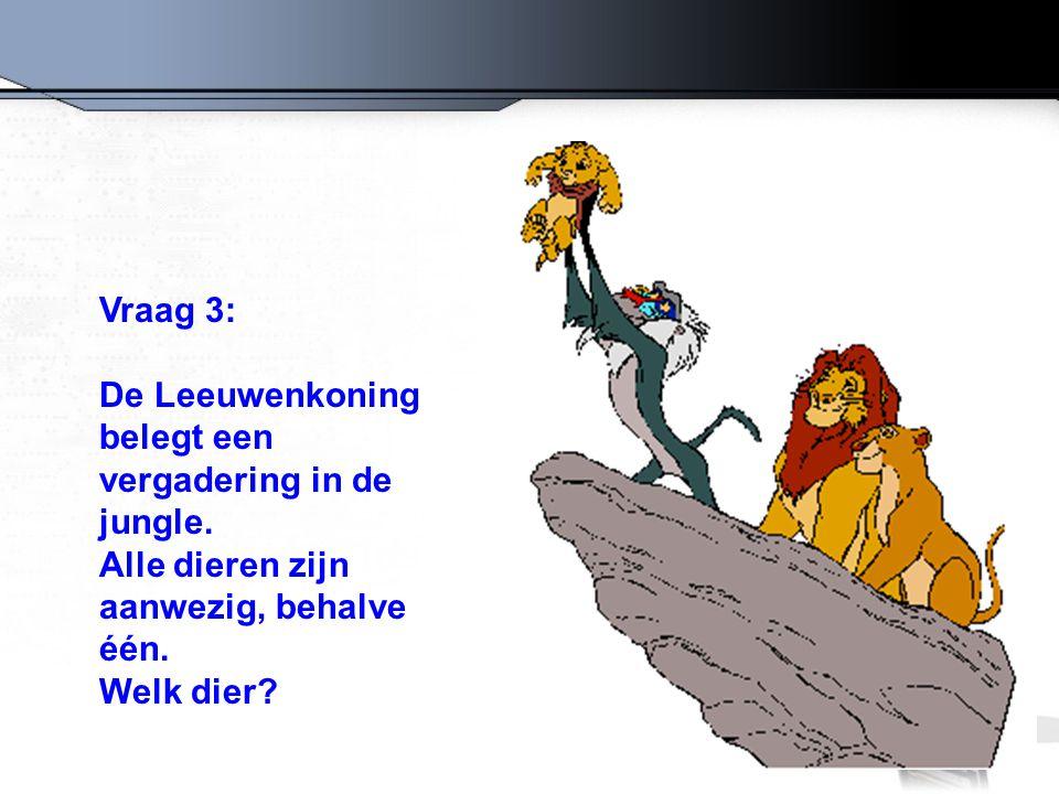 Vraag 3: De Leeuwenkoning belegt een vergadering in de jungle. Alle dieren zijn aanwezig, behalve één.