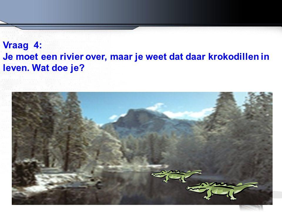 Vraag 4: Je moet een rivier over, maar je weet dat daar krokodillen in leven. Wat doe je