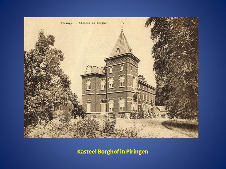 Kasteel Borghof in Piringen