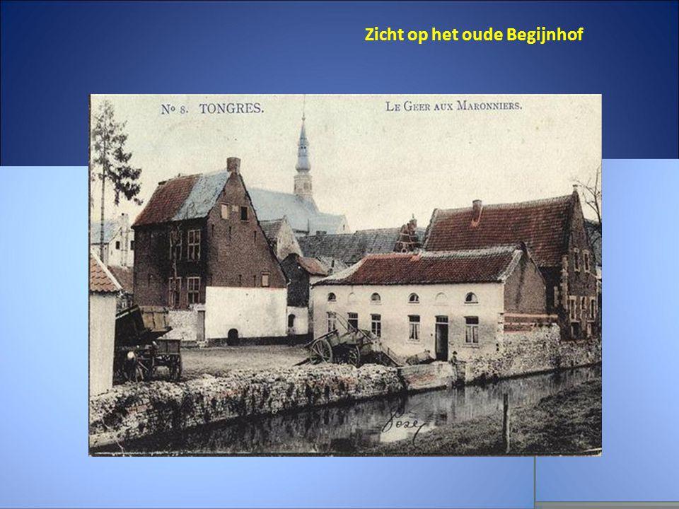 Zicht op het oude Begijnhof