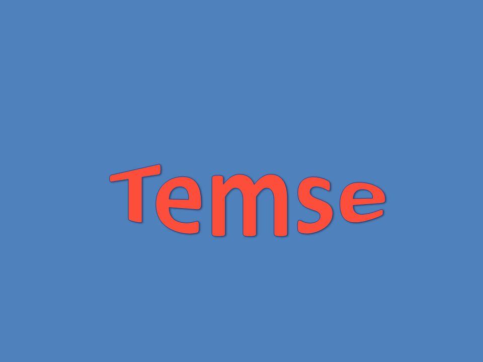Temse