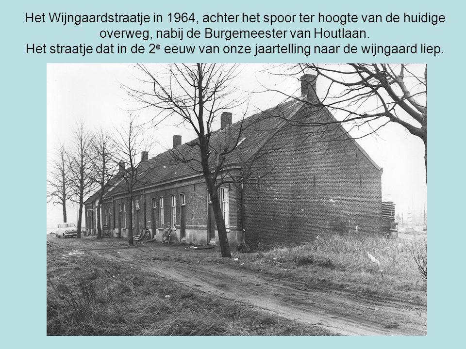 Het Wijngaardstraatje in 1964, achter het spoor ter hoogte van de huidige overweg, nabij de Burgemeester van Houtlaan.