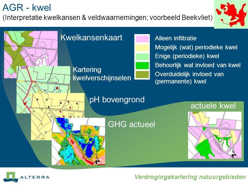AGR - kwel (Interpretatie kwelkansen & veldwaarnemingen; voorbeeld Beekvliet)