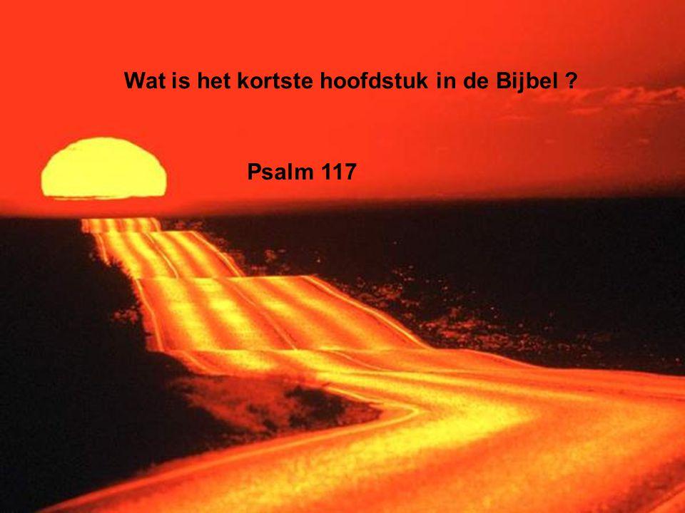 Wat is het kortste hoofdstuk in de Bijbel