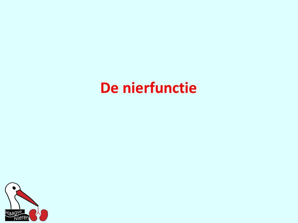 De nierfunctie