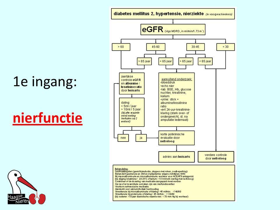 1e ingang: nierfunctie