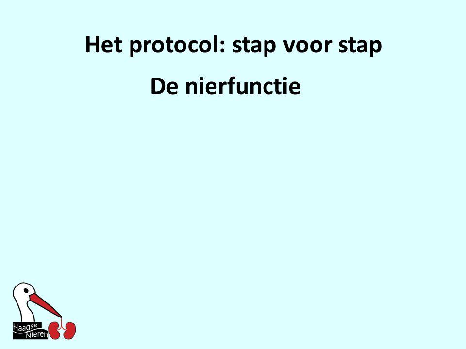 Het protocol: stap voor stap