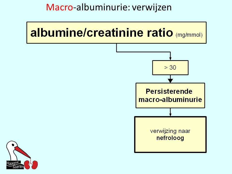Macro-albuminurie: verwijzen
