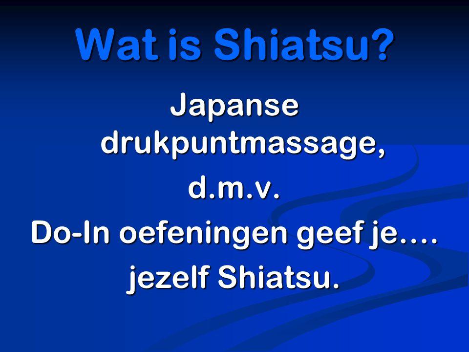 Wat is Shiatsu Japanse drukpuntmassage, d.m.v.