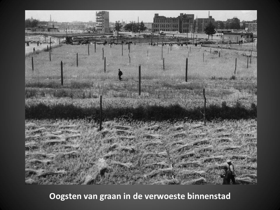 Oogsten van graan in de verwoeste binnenstad