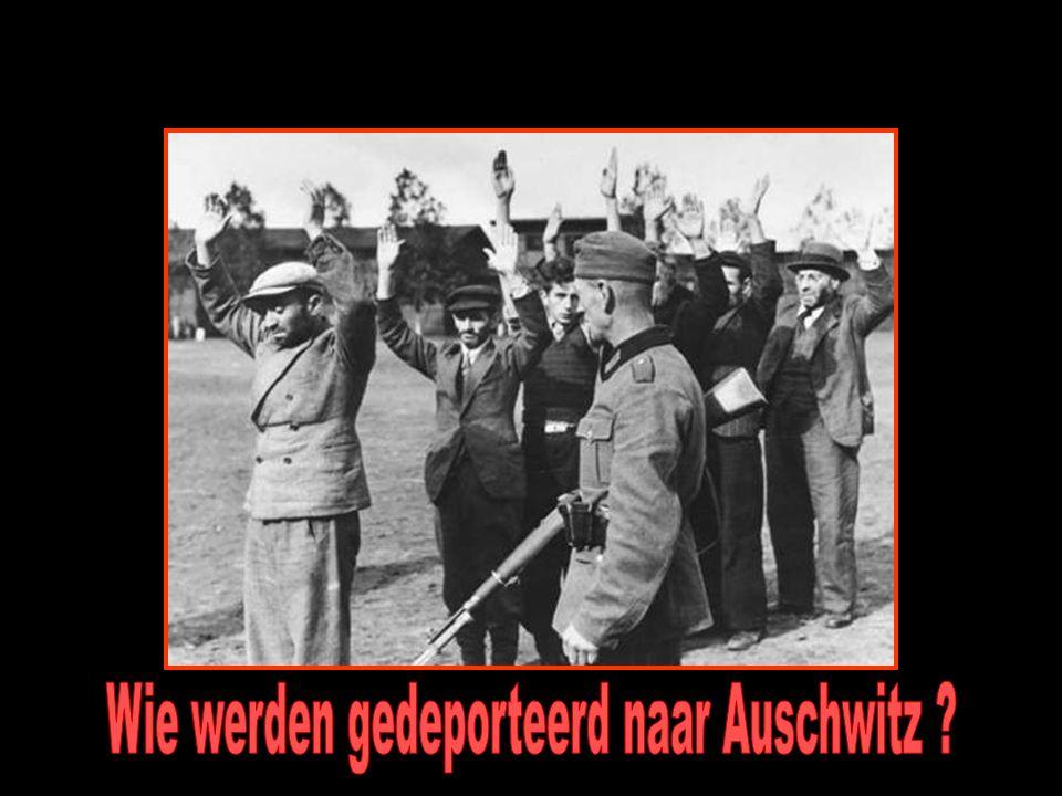 Wie werden gedeporteerd naar Auschwitz